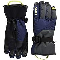 phenix(フェニックス) Performance Gloves PS878GL34 DN S