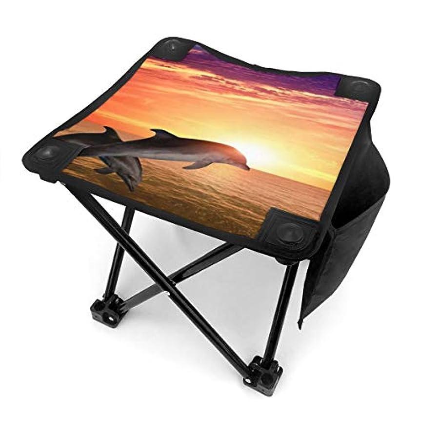 欺く額足首オーシャンシードルフィン キャンプ用折りたたみスツール アウトドアチェア 折りたたみ コンパクト椅子 折りたたみスツール 小型スツール 収納袋付き 持ち運びが簡単 耐荷重100kg