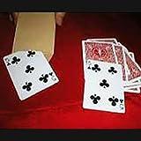 マジック エイト?カード EC-01