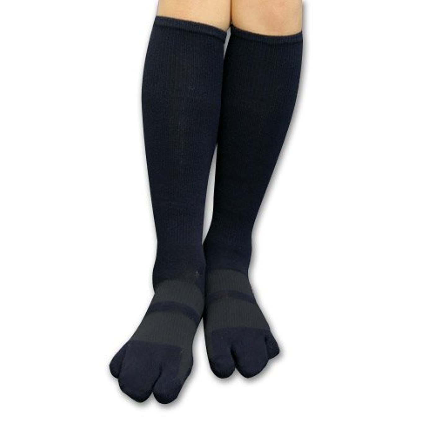 出くわす杭日の出カサハラ外反母趾?浮き指対策 歩行矯正ロングテーピング3本指靴下 (L(24-26cm))