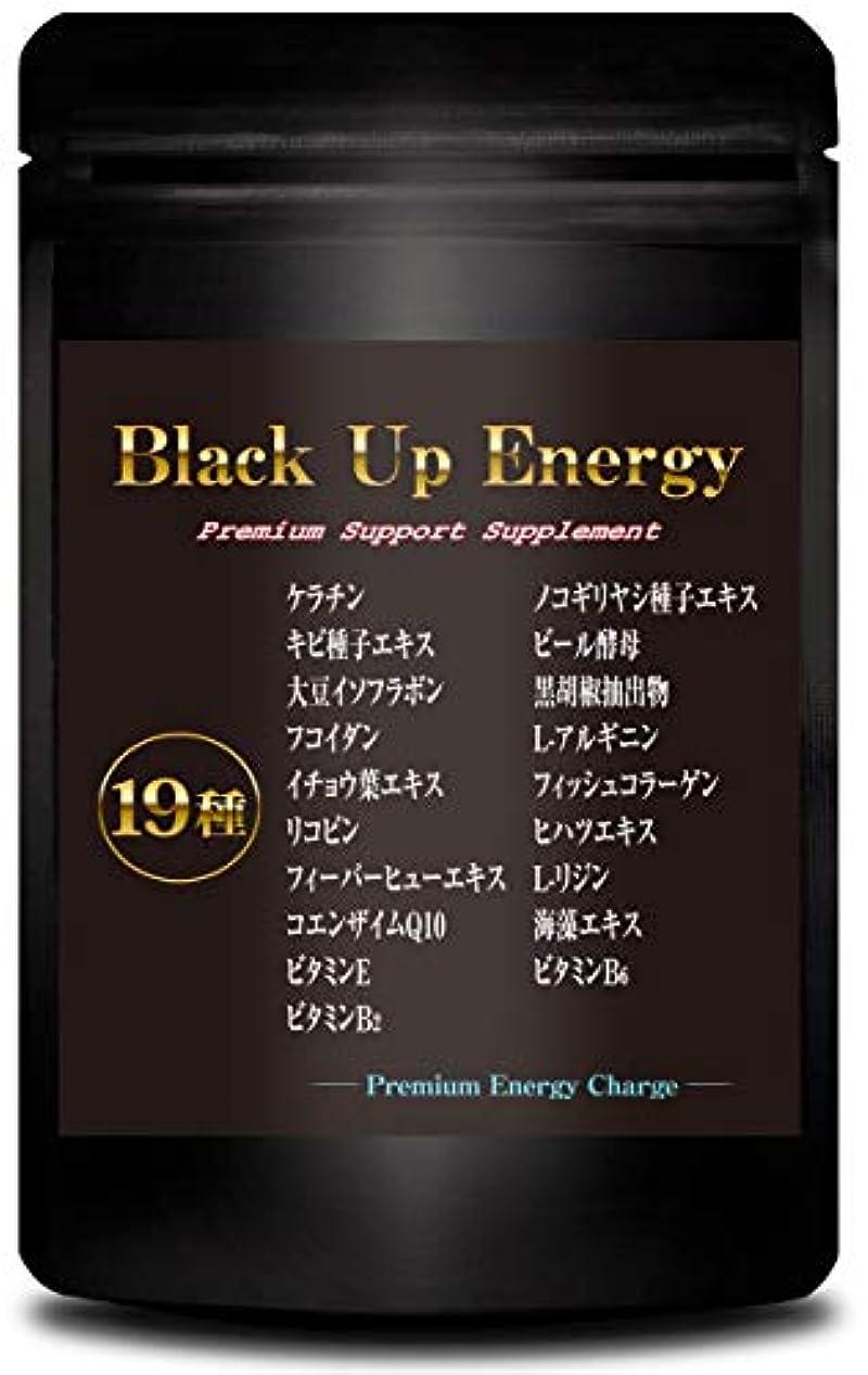 混乱した解読する報酬のBlack Up Energy ノコギリヤシ ケラチン サプリメント 厳選19素材 30日分