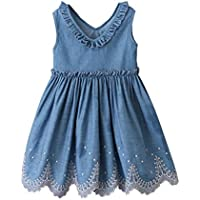 Fairy Baby Girls Summer Vest Dress Kid V Neck Sleevelss Ruffle Lace Embroidered Denim Dress