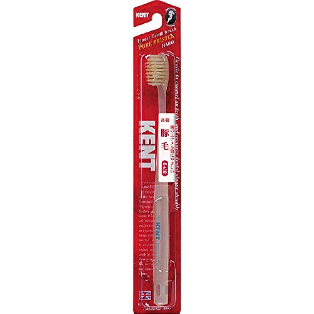 再集計憧れブリーフケースKENTケント 豚毛歯ブラシ 毛の硬さ:かため KNT-1333 6本セット
