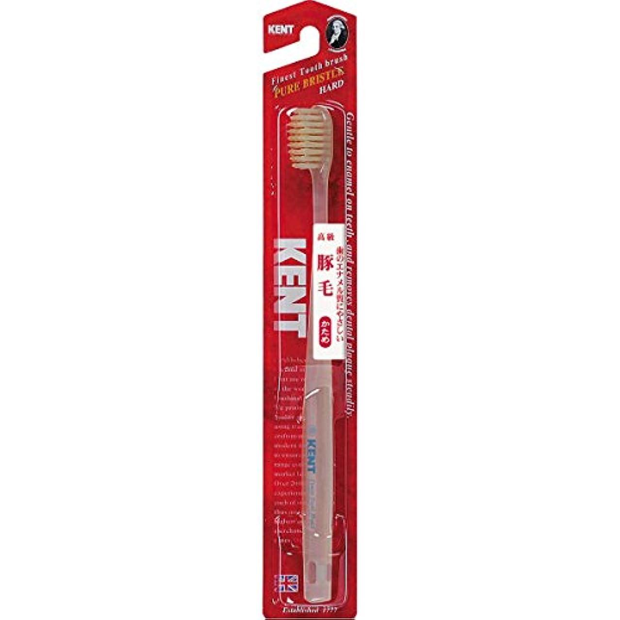 ベアリングサークル拒絶そばにKENTケント 豚毛歯ブラシ 毛の硬さ:かため KNT-1333 6本セット
