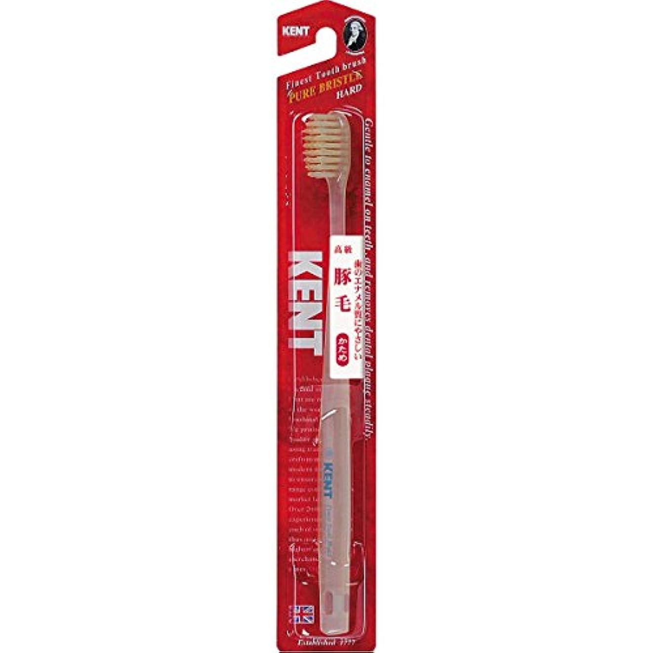 増強する技術的な論理KENTケント 豚毛歯ブラシ 毛の硬さ:かため KNT-1333 6本セット