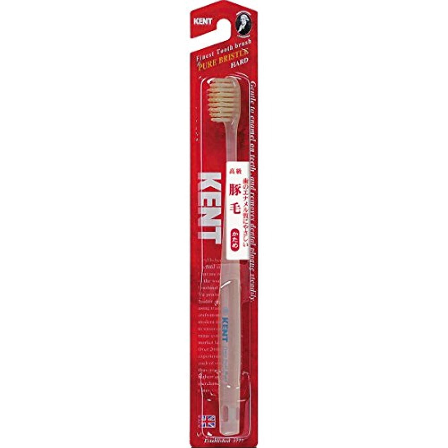 パースホップ継続中KENT 豚毛歯ブラシ コンパクトヘッド かため KNT-1333