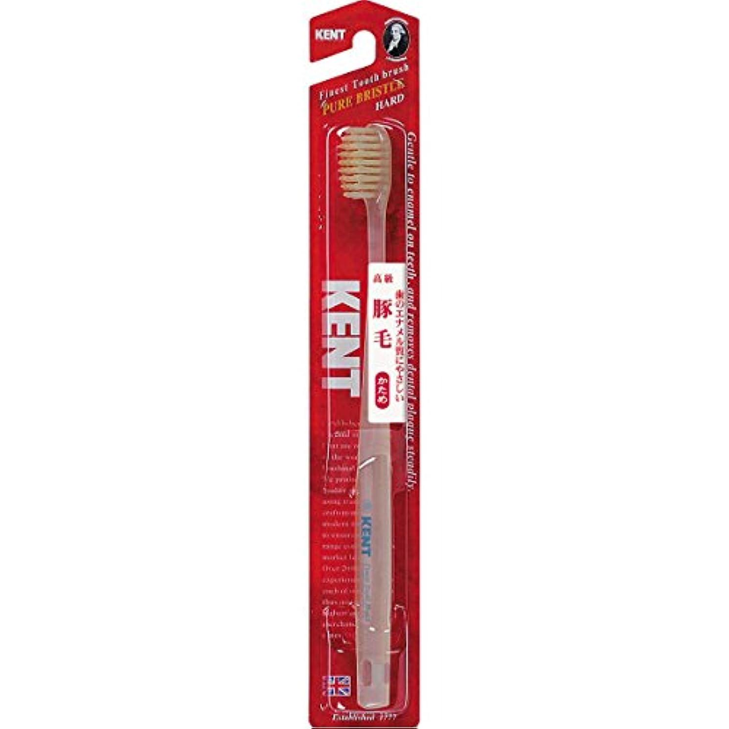 レンダー見つけた発明するケント 豚毛歯ブラシ コンパクトヘッド 6本セット かため