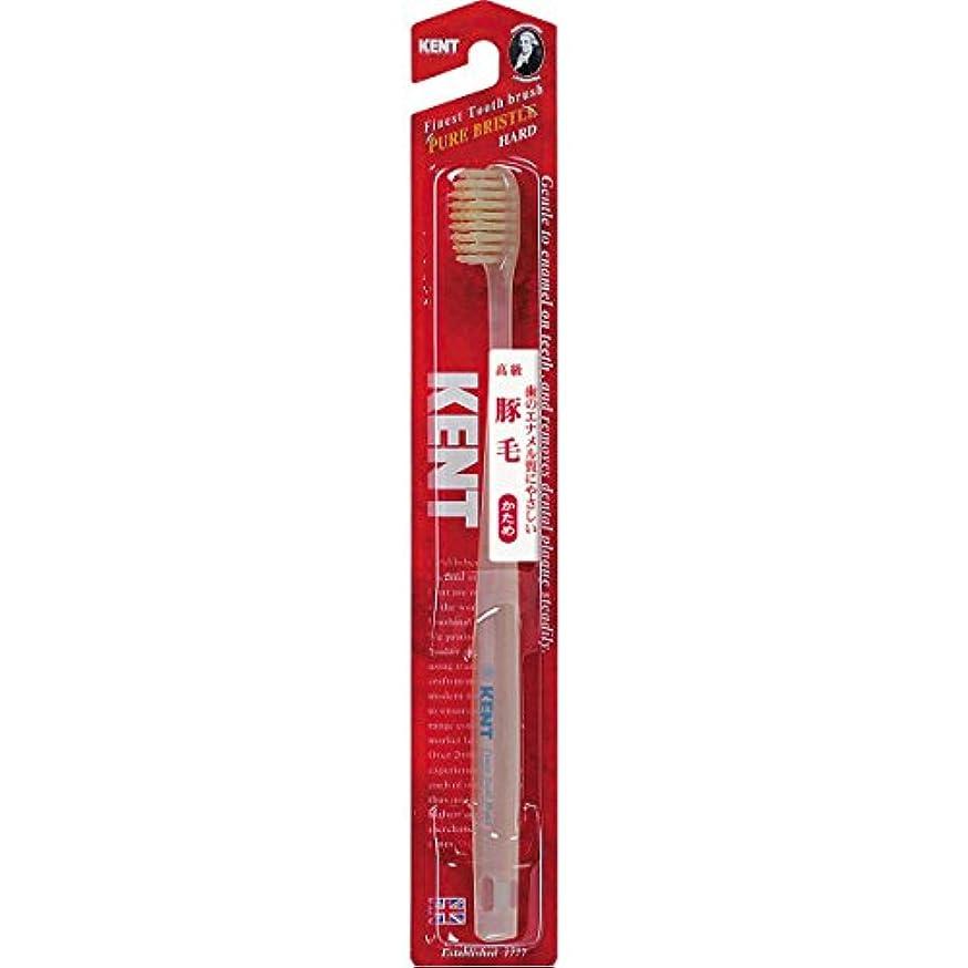 動的その階下KENTケント 豚毛歯ブラシ 毛の硬さ:かため KNT-1333 6本セット