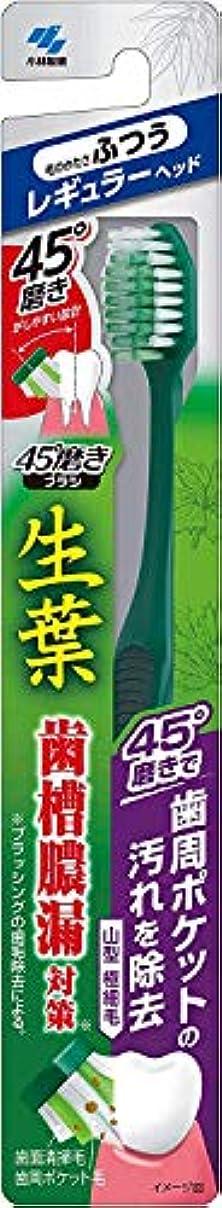 南敬意を表する地球小林製薬 生葉45°磨きブラシ 歯周ポケットの汚れを除去 レギュラー ふつう