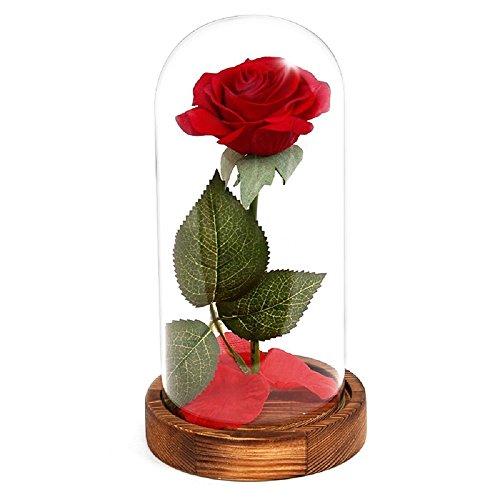 SODIAL 永遠のバラの花赤いシルクのローズとガラスの落ち...