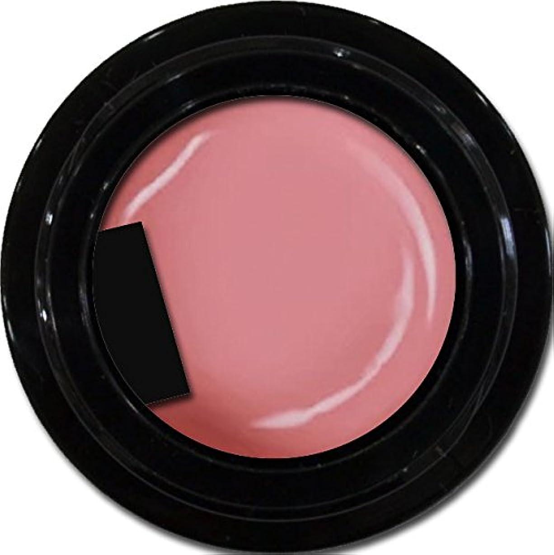こどもの日ループ風刺カラージェル enchant color gel M210 ApricotPink 3g/ マットカラージェル M210 アプリコットピンク 3グラム