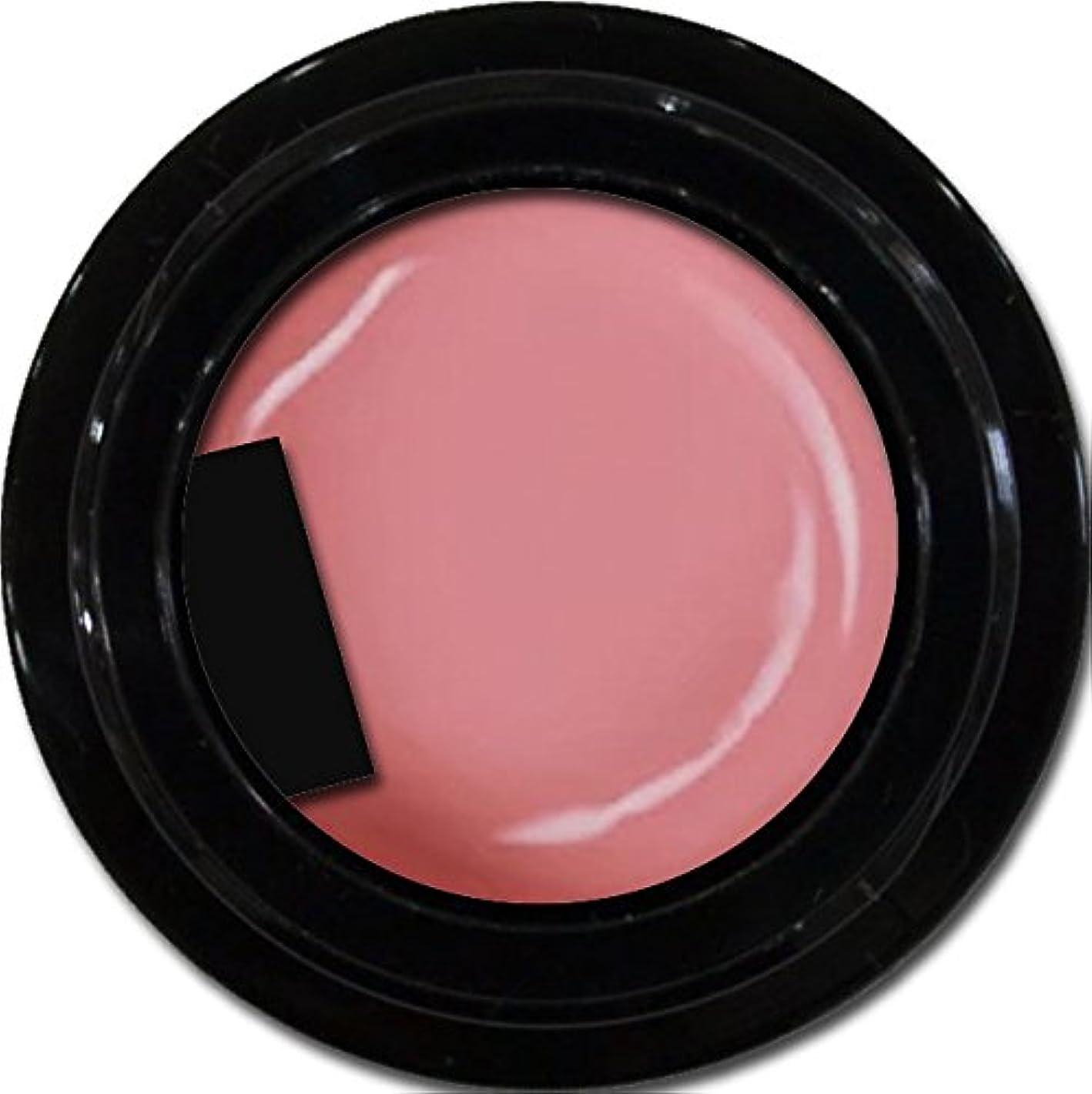取るに足らない不要反発カラージェル enchant color gel M210 ApricotPink 3g/ マットカラージェル M210 アプリコットピンク 3グラム