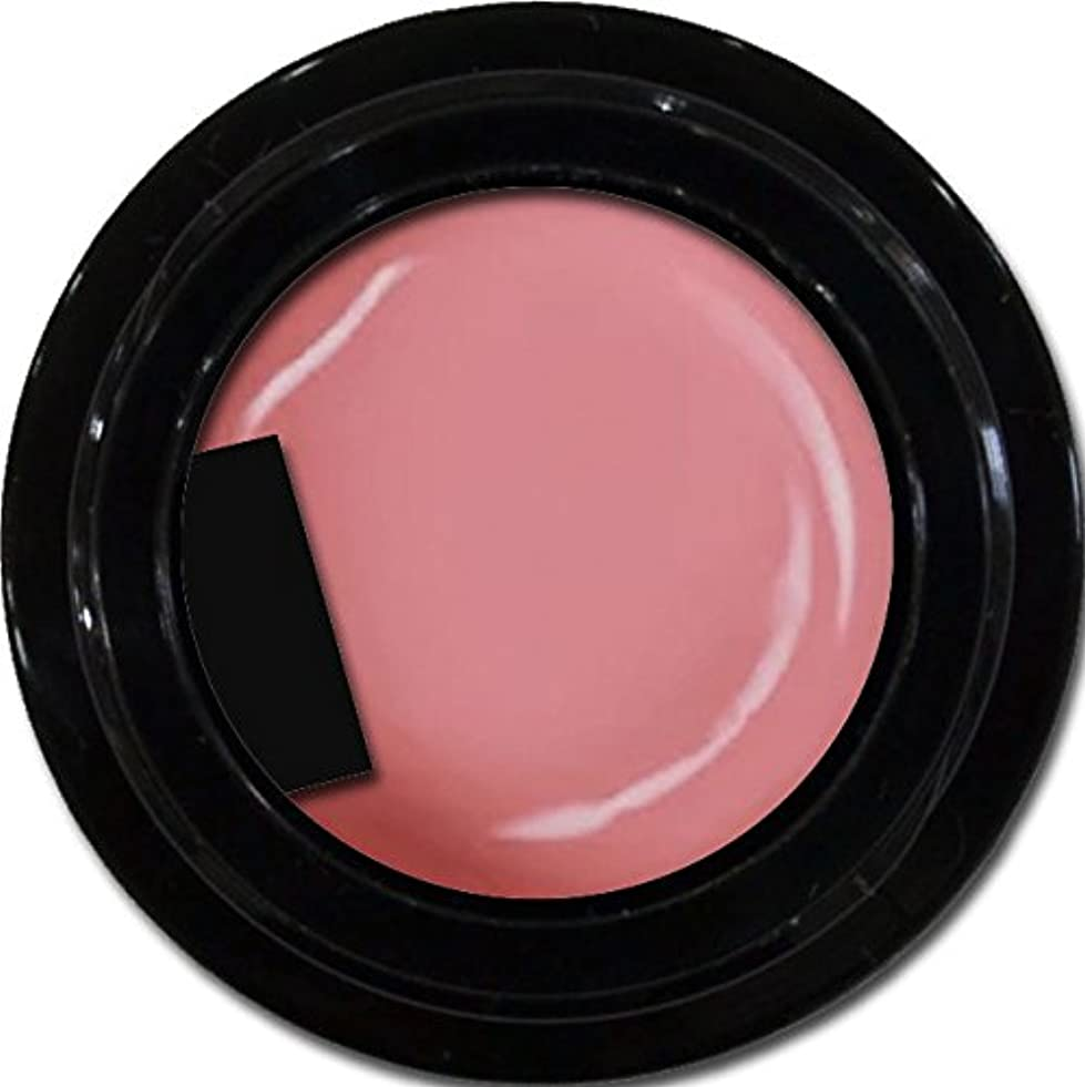 比べる同時近々カラージェル enchant color gel M210 ApricotPink 3g/ マットカラージェル M210 アプリコットピンク 3グラム