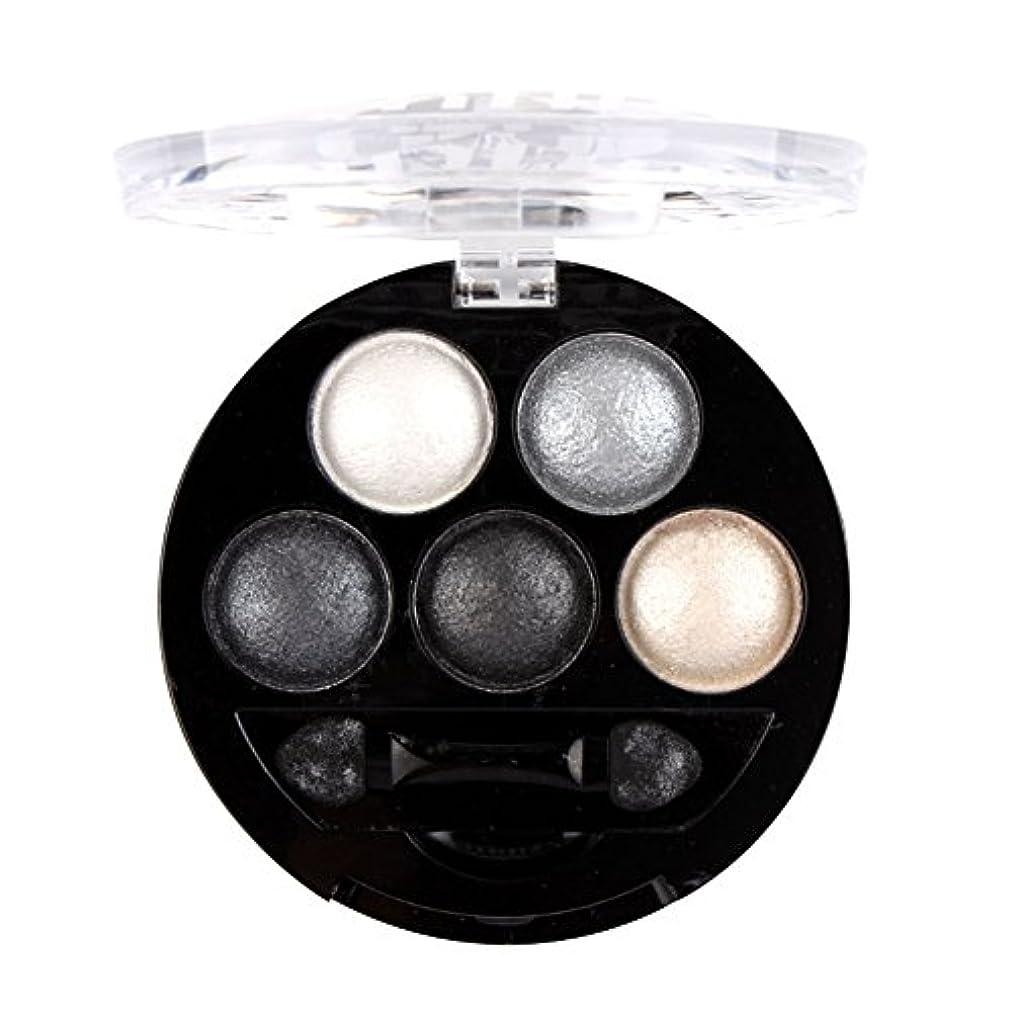 心配好戦的な鏡MyMei アイシャド アイカラーパレット コンパクト コスメ きれい コンパクト 5色 発色が素晴らしい!  (#6)