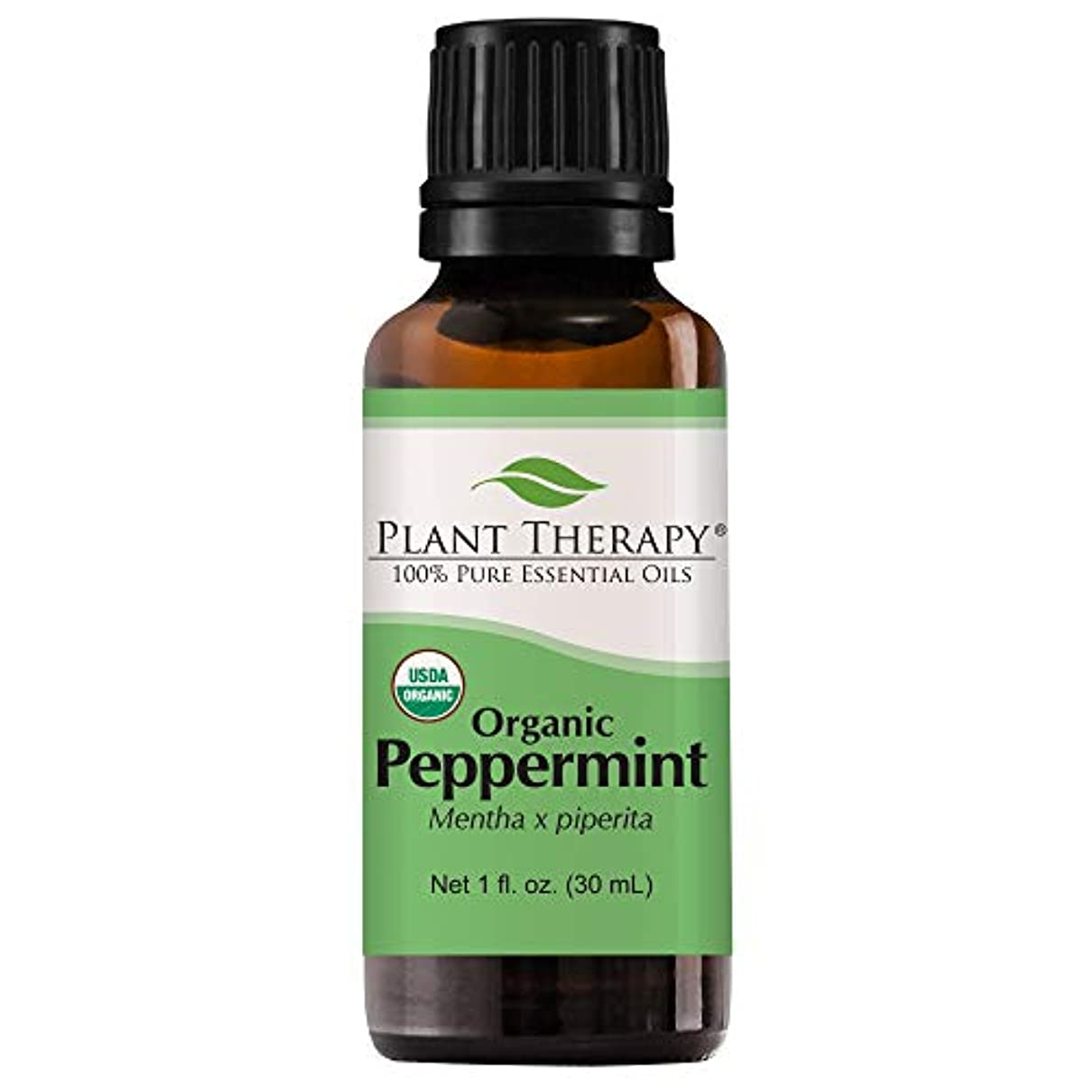 断線ギャップ体系的に植物セラピーUSDA認定オーガニックペパーミントエッセンシャルオイル。 100%ピュア、希釈していない、治療グレード。 30mLの(1オンス)。