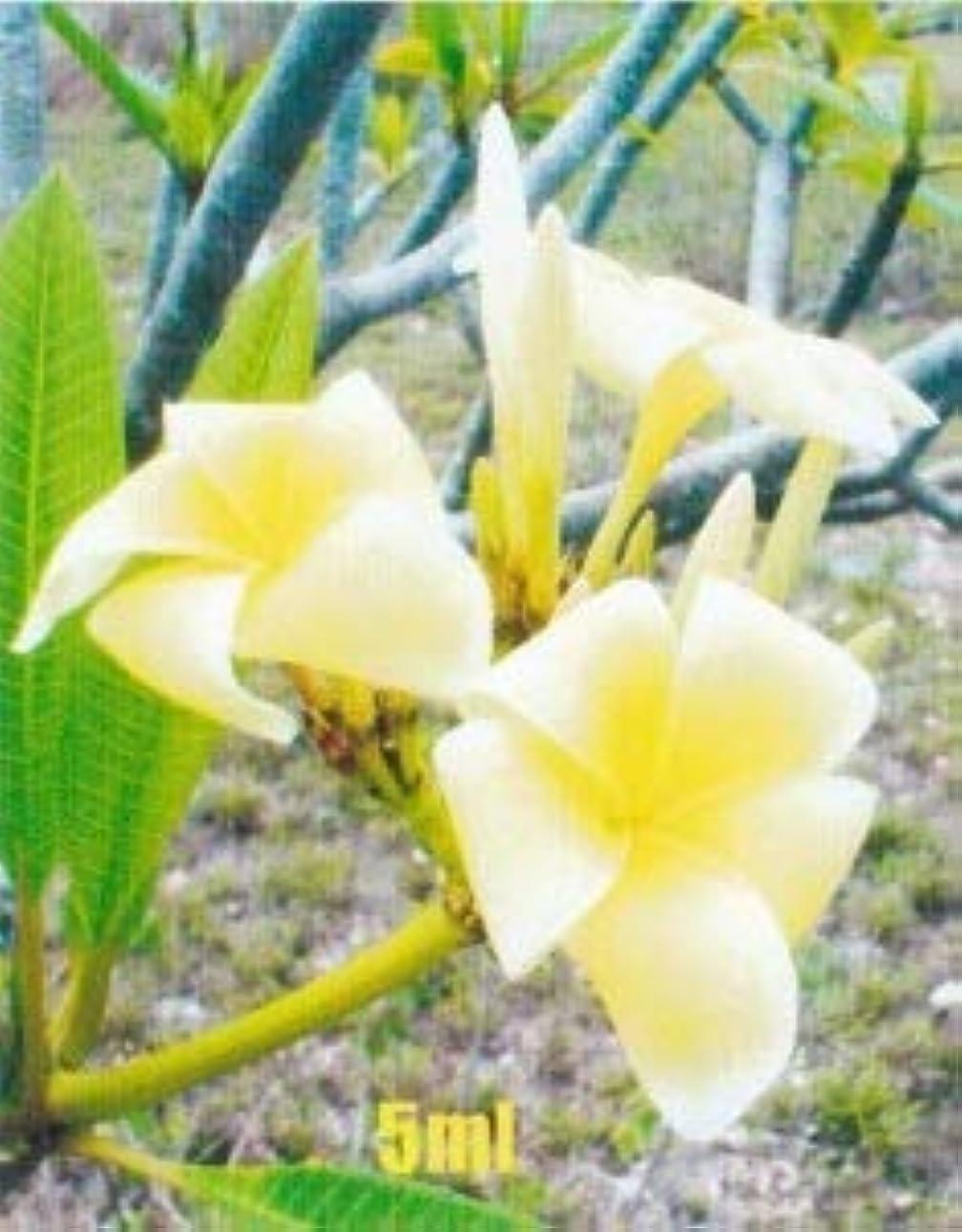 混乱させる年齢別のアロマオイル フランギパニ (プルメリア)5ml エッセンシャルオイル 100%天然成分