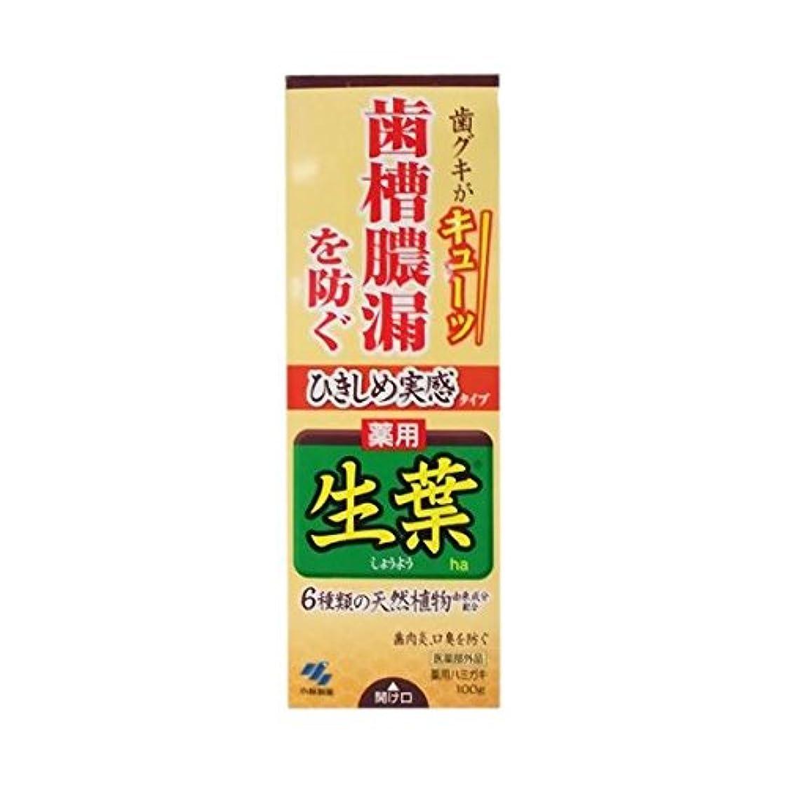 パンドレインつかむ【お徳用 3 セット】 ひきしめ生葉 100g×3セット