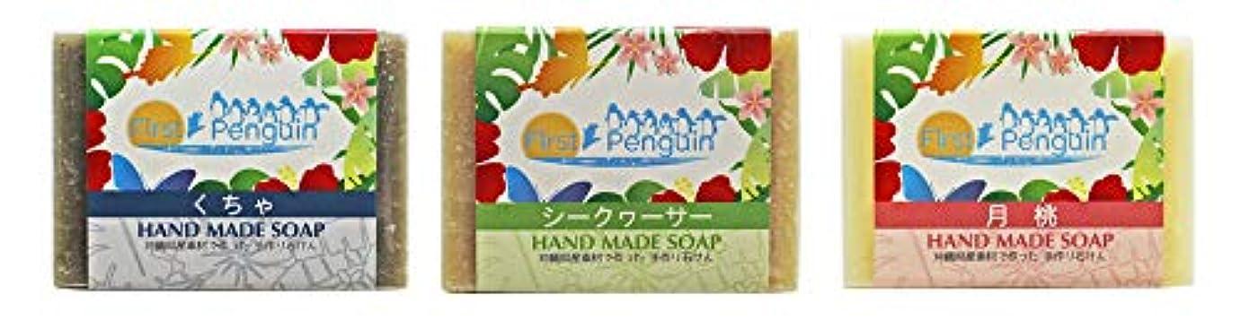 集中チャップこれら手作り洗顔石けん (くちゃ、シークヮーサー、月桃)