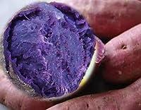 鹿児島県産 紫芋「 パープルスイートロード 」 1箱:約2kg サイズ:混合(2018年産) むらさき