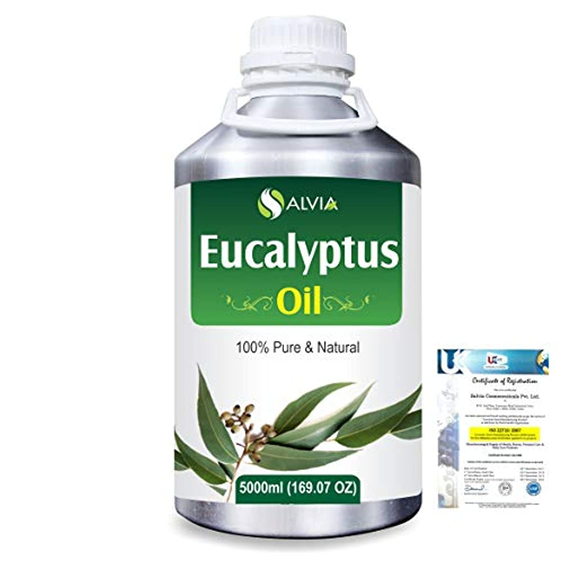 幽霊印象的な少数Eucalyptus (Eucalyptus Globulus) 100% Natural Pure Essential Oil 5000ml/169fl.oz.