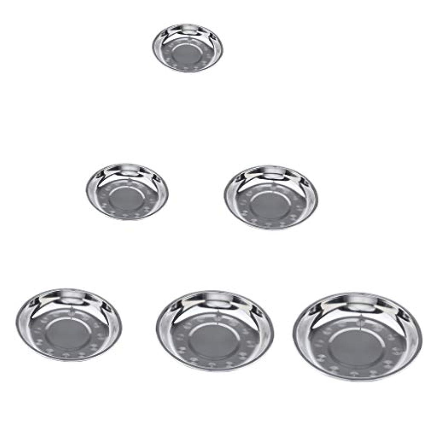校長法医学優遇D DOLITY 6個 ステンレス鋼 プレート 皿 キャンプ ピクニック用 食器