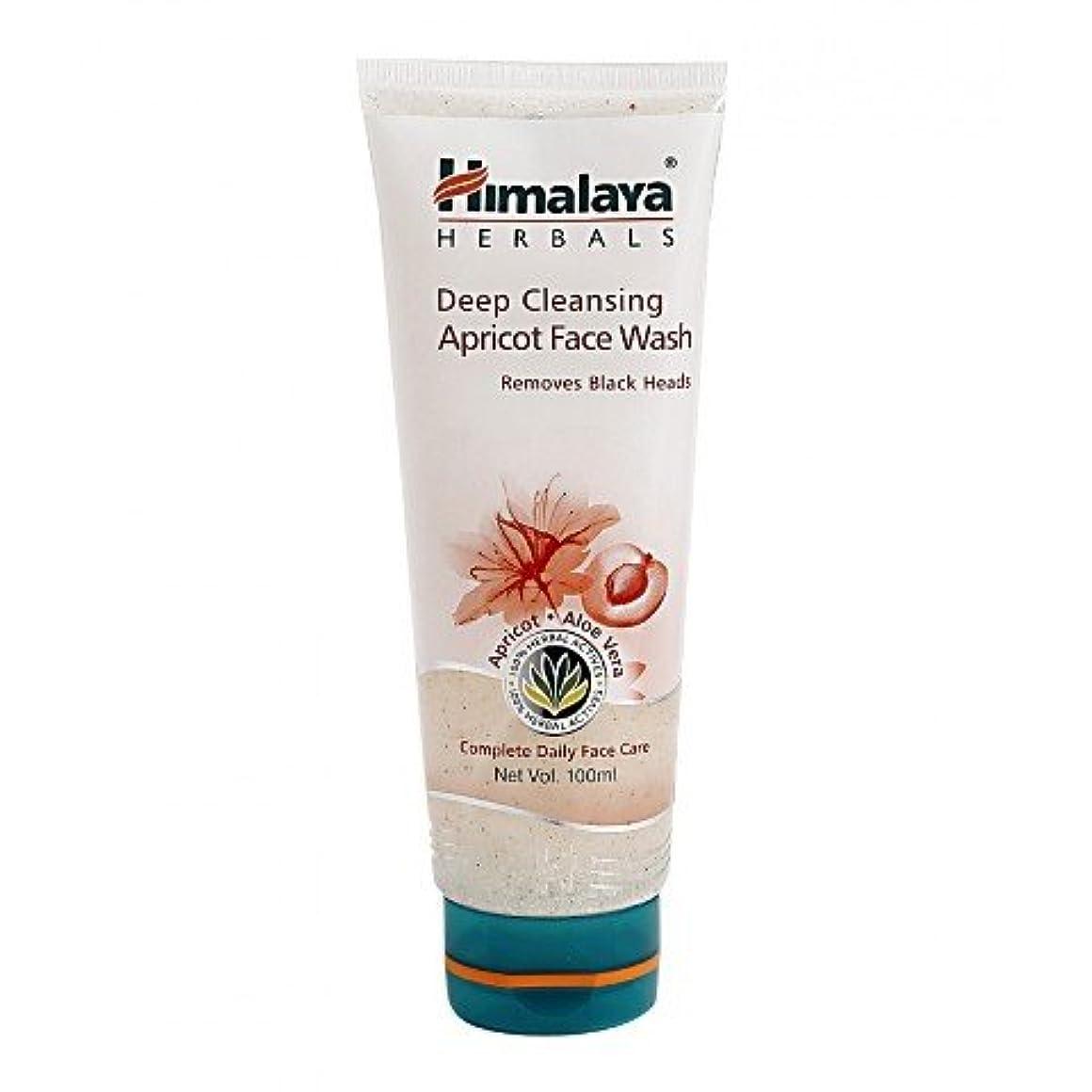 フェデレーション食事句Himalaya Gentle Exfoliating Daily Face Wash 100gm