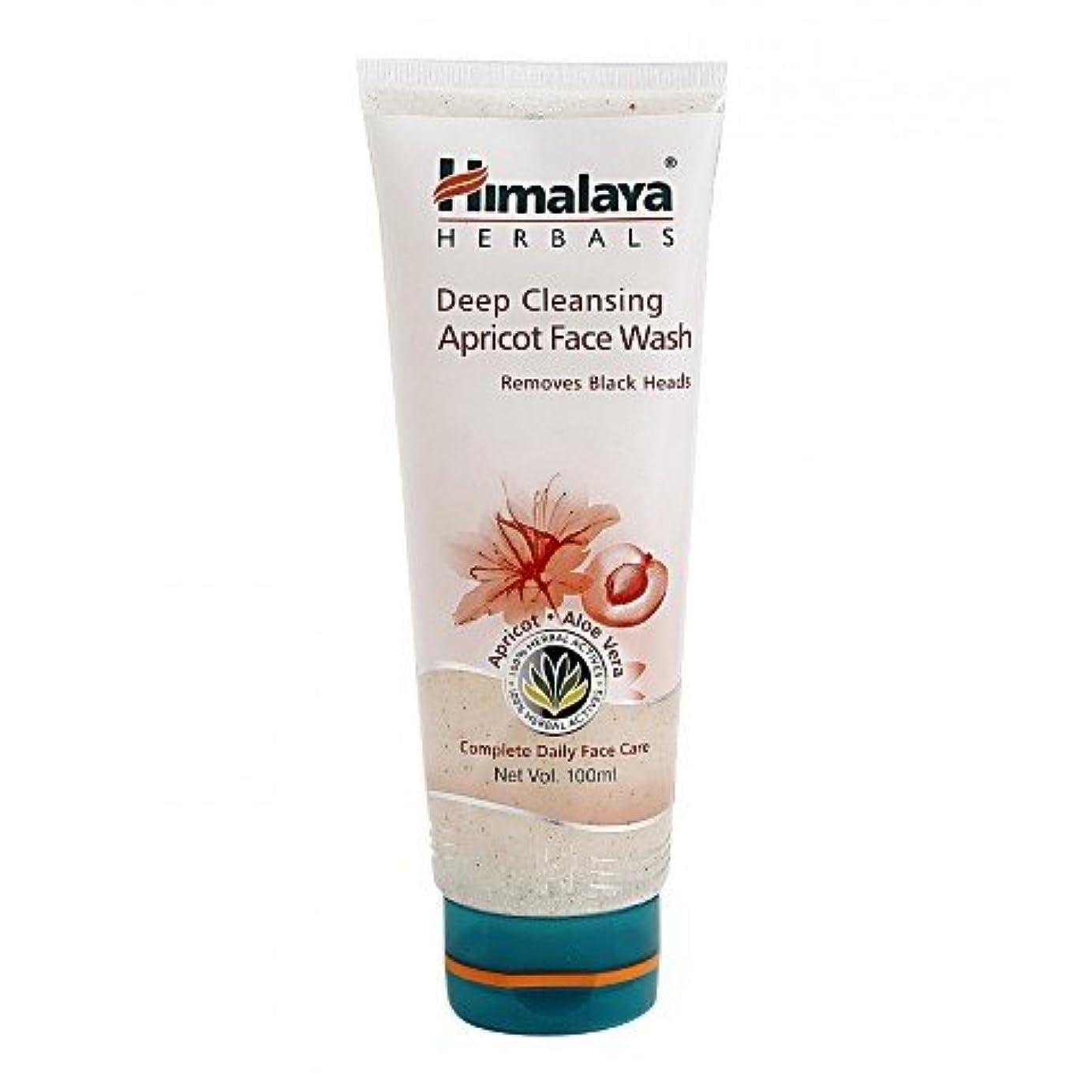 想像する意図する回想Himalaya Gentle Exfoliating Daily Face Wash 100gm