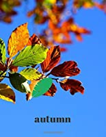 Autumn: Notebook Large 8.5x11 - 110 Pages - Matte