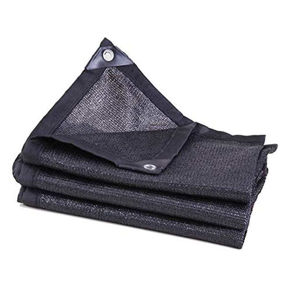 素敵な反動ポゴスティックジャンプDALL オーニング サンシェード キャノピーカバー 日除け シェード ガーデンパティオ 紫外線保護 矩形 メタルバックル ポリエチレン (Color : Black, Size : 2×6m)