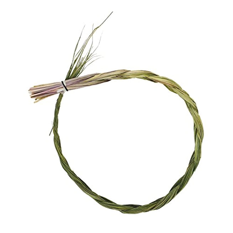 アルネ集中磁気Alternative想像力Sweetgrass Incense三つ編み、Extra Largeサイズ、長さ24インチ