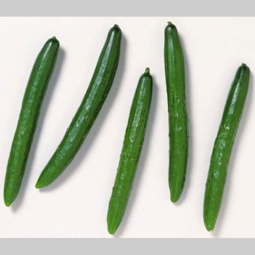 国産 きゅうり キュウリ 胡瓜 1箱5kg