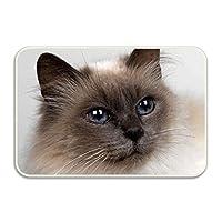 玄関マット バスマット 屋内 室内 洗面所 バスルーム 用 吸水 滑り止め 付き ネコ