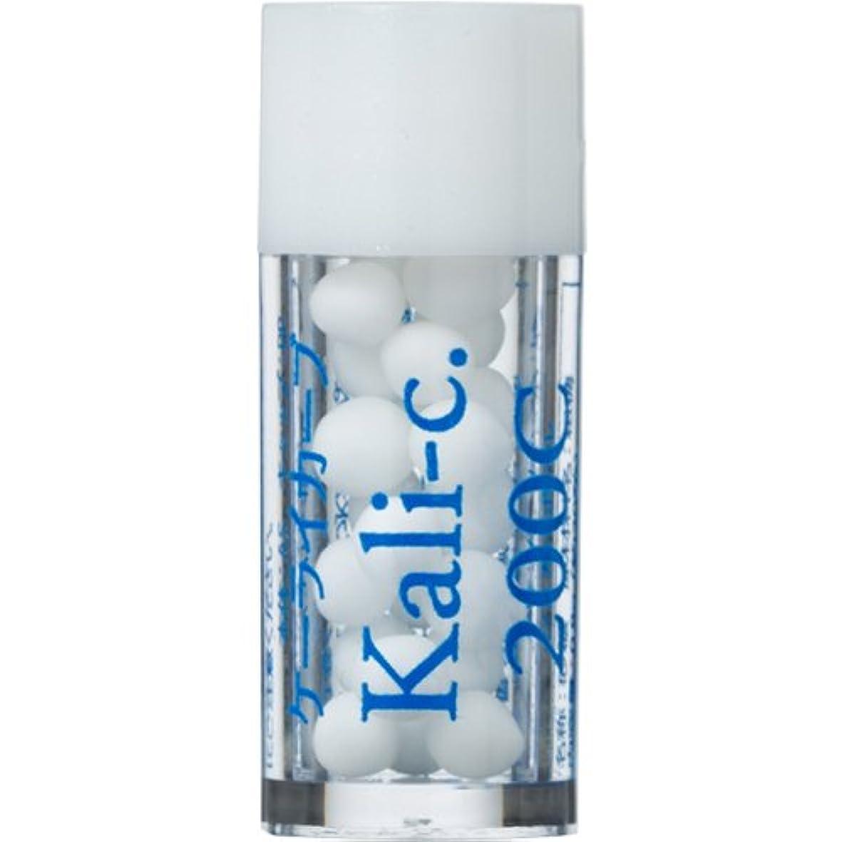 スポーツをする悪化させる静かにホメオパシージャパンレメディー バース14 Kali-c.ケーライカーブ 200C