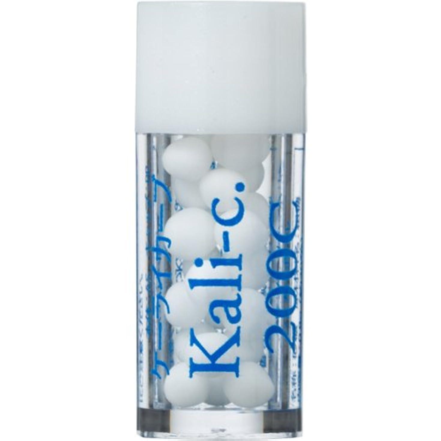 裂け目にもかかわらず健康ホメオパシージャパンレメディー バース14 Kali-c.ケーライカーブ 200C