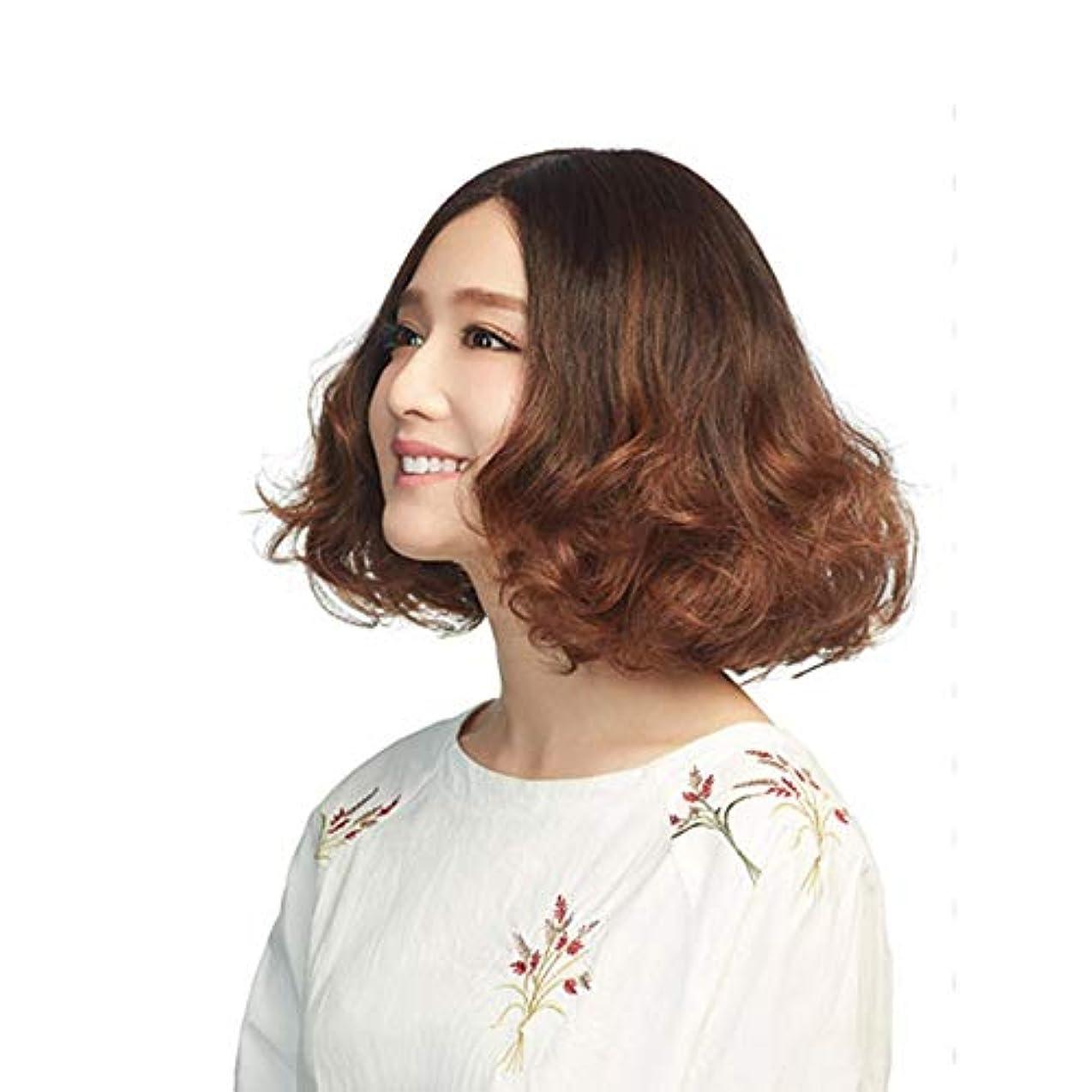 にぎやかポーク共産主義YOUQIU 無料キャップウィッグを持つ女性の茶ショートカーリーヘアふわふわ人工毛 (色 : ブラウン)