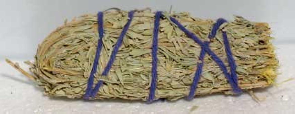 委員長オーバーフローエジプトWee Sage Smudge Stick