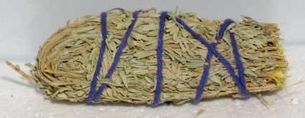 マイクロフォンシンプルさ上Wee Sage Smudge Stick