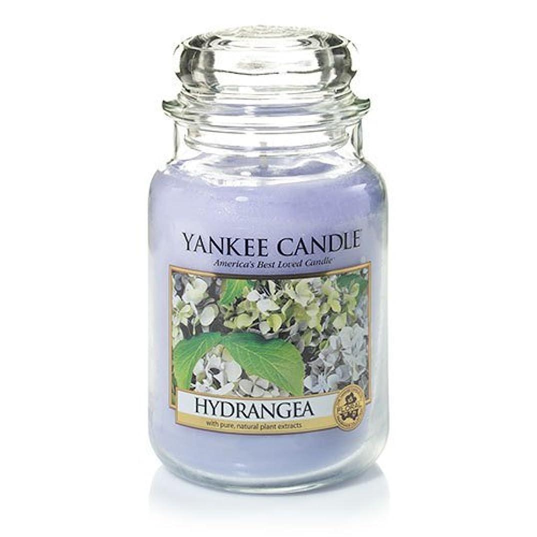 読みやすいダイアクリティカルポンプYankee Candle Hydrangea Large Jar Candle、新鮮な香り
