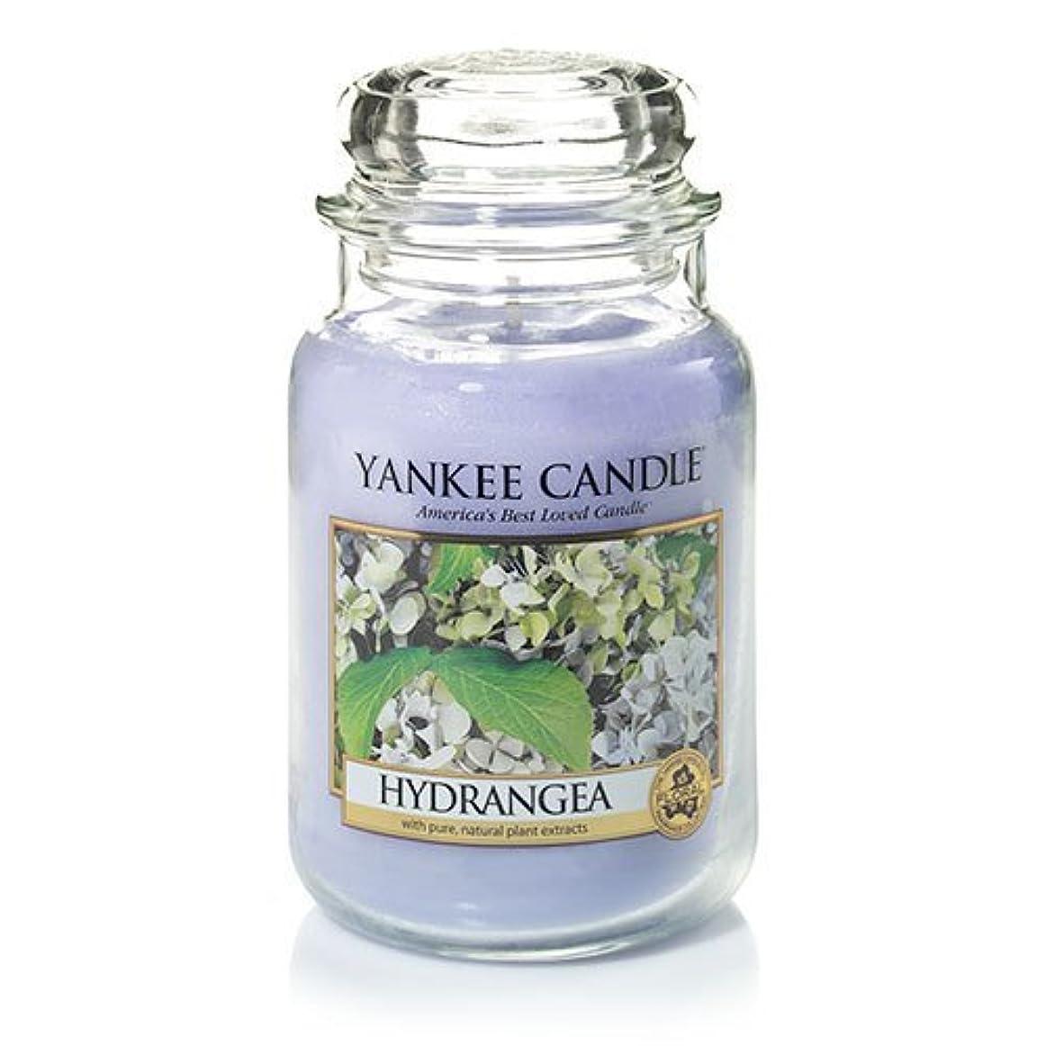 猛烈な大型トラック首謀者Yankee Candle Hydrangea Large Jar Candle、新鮮な香り