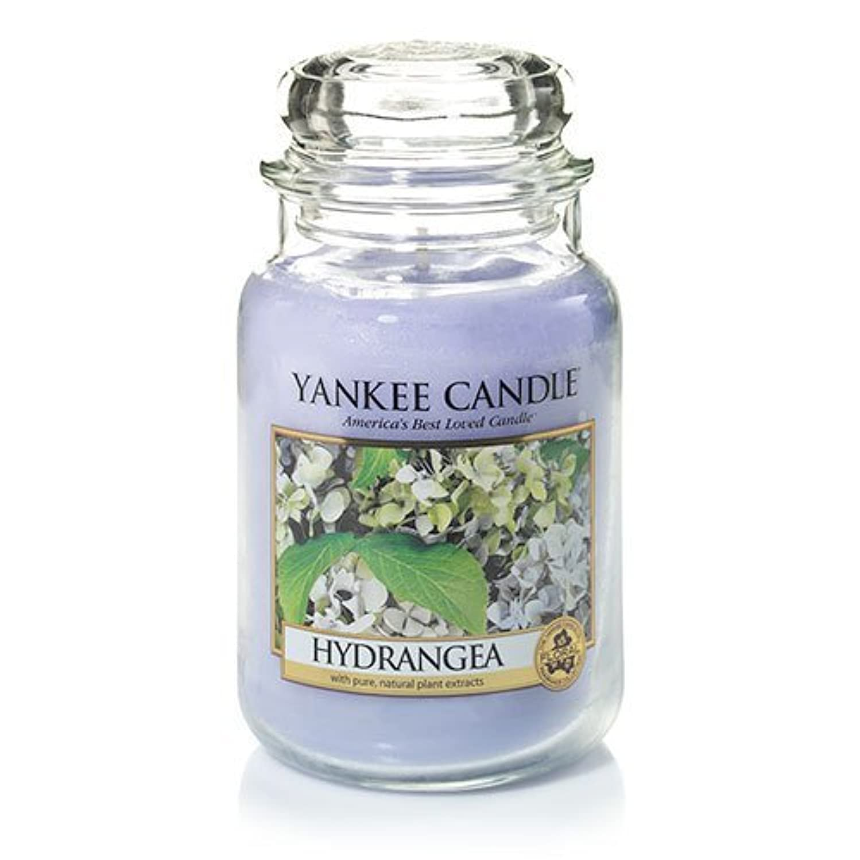 ナチュラ洞察力ルアーYankee Candle Hydrangea Large Jar Candle、新鮮な香り