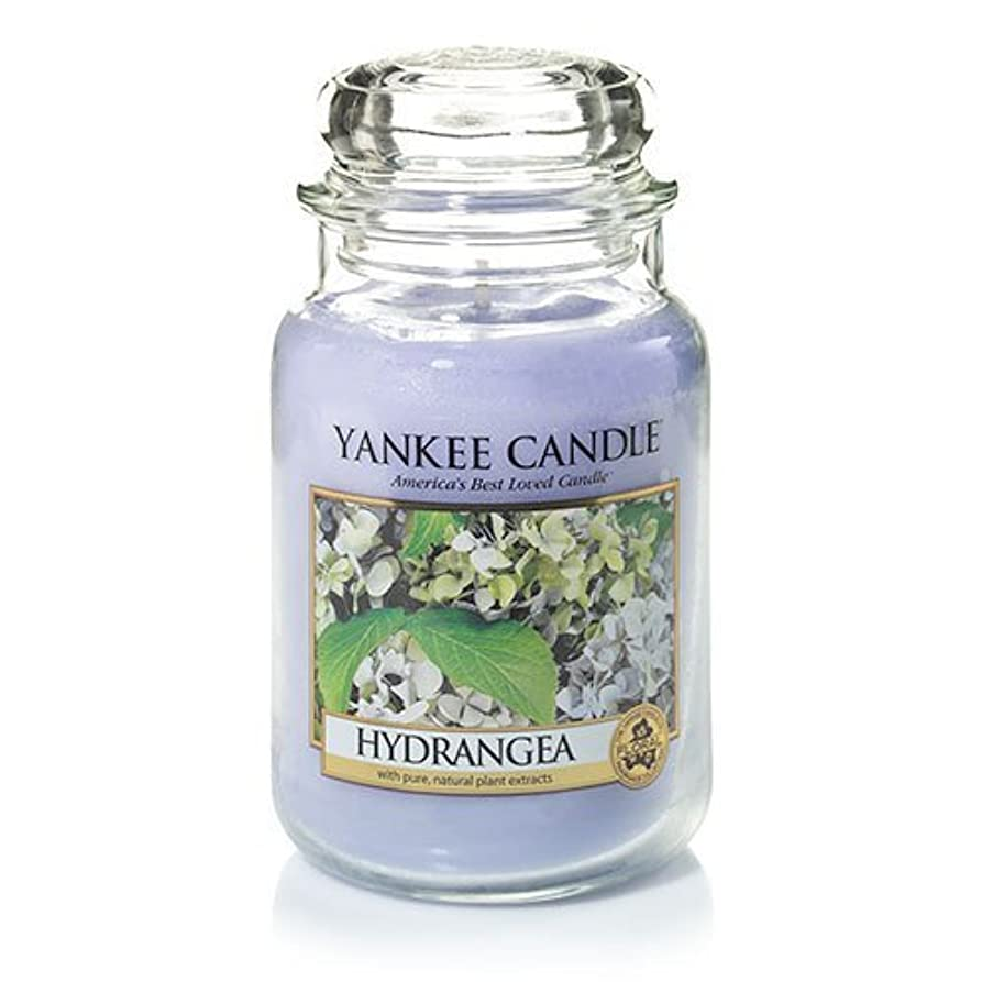 リング幻影じゃないYankee Candle Hydrangea Large Jar Candle、新鮮な香り