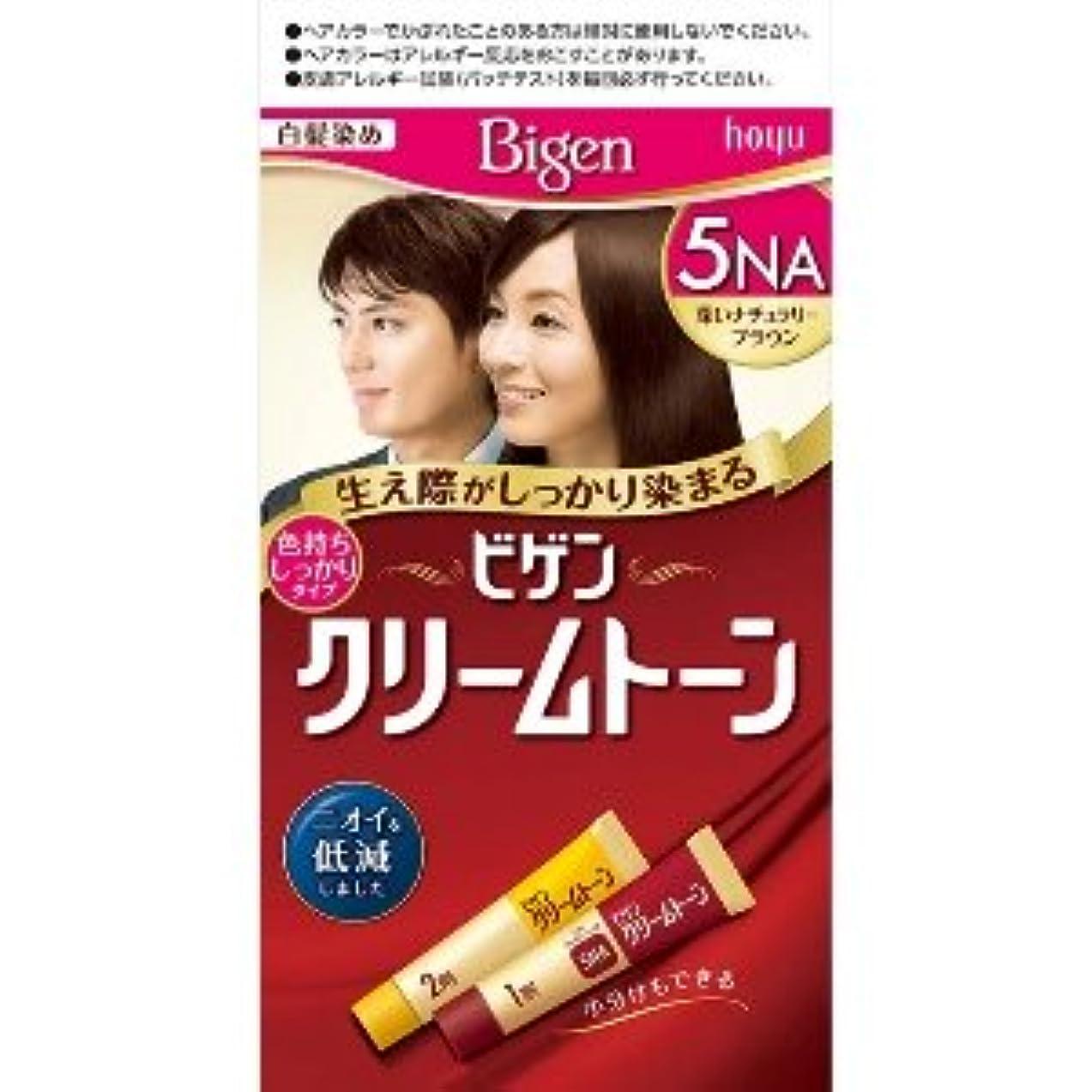 順番減少閉塞ビゲン クリームトーン 5NA(深いナチュラリーブラウン) ×6個