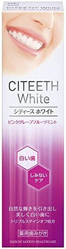 腐った主最愛のシティースホワイト+しみないケア 110g [医薬部外品]