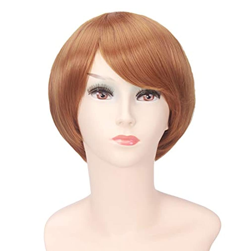位置づけるモンキー鍔YOUQIU 女性のかつらのためにボブ?ヘッド茶ショートストレート髪高温シルクウィッグ (色 : Photo Color)