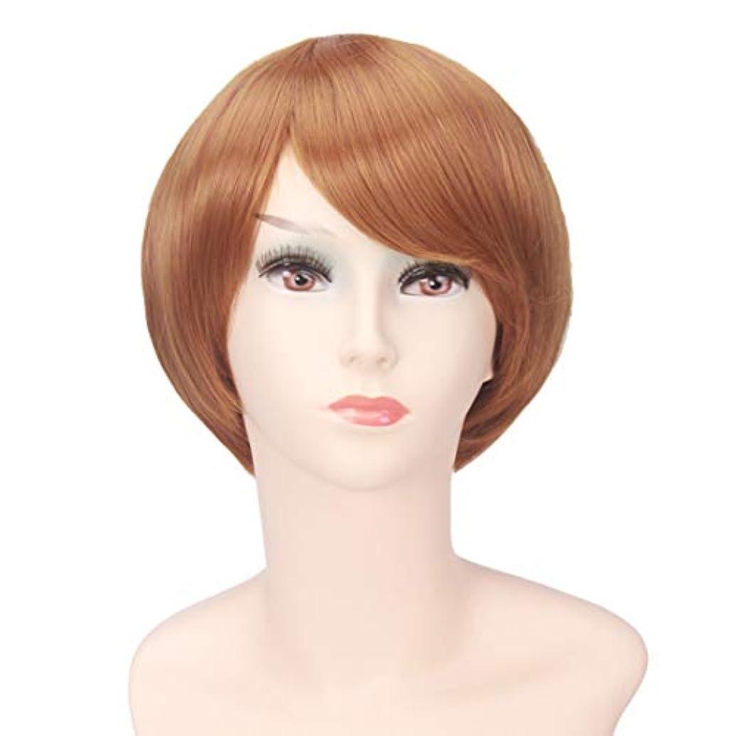 ミケランジェロ突き刺すくそーYOUQIU 女性のかつらのためにボブ?ヘッド茶ショートストレート髪高温シルクウィッグ (色 : Photo Color)