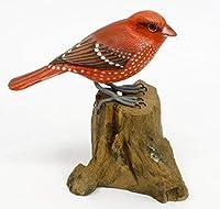 赤い鳥#9(No96)