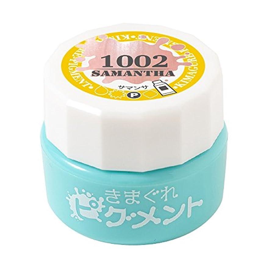 鼻一般化する防水Bettygel きまぐれピグメント サマンサ QYJ-1002 4g UV/LED対応