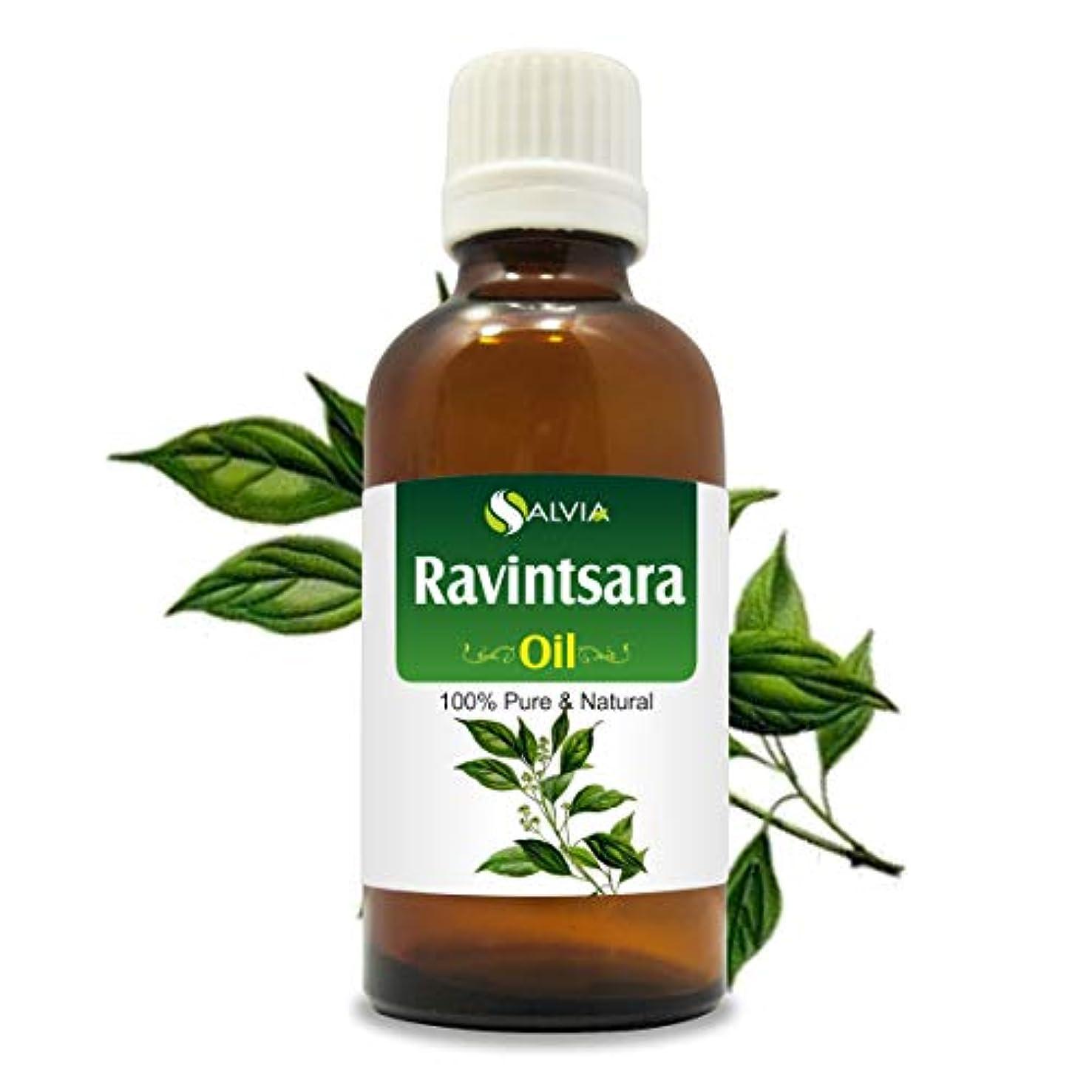 速記おもてなし素晴らしいですRavintsara Oil (Cinnamomum camphora) 100% Natural Pure Undiluted Uncut Essential Oil 50ml