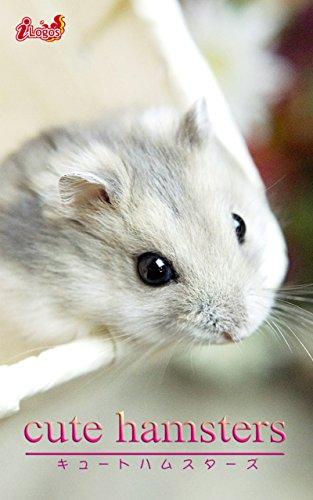 cute hamsters02 ジャンガリアン...