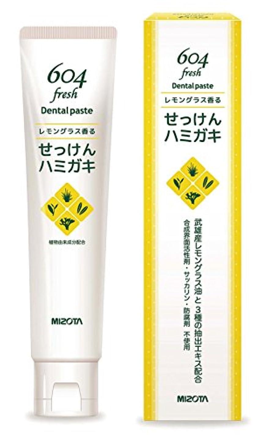 かる代名詞鑑定ミゾタ604石鹸ハミガキ